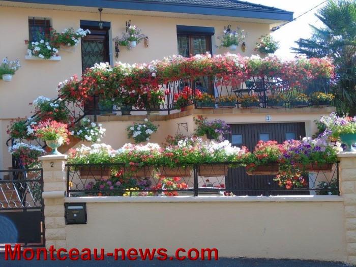 fleurs mont 24071530