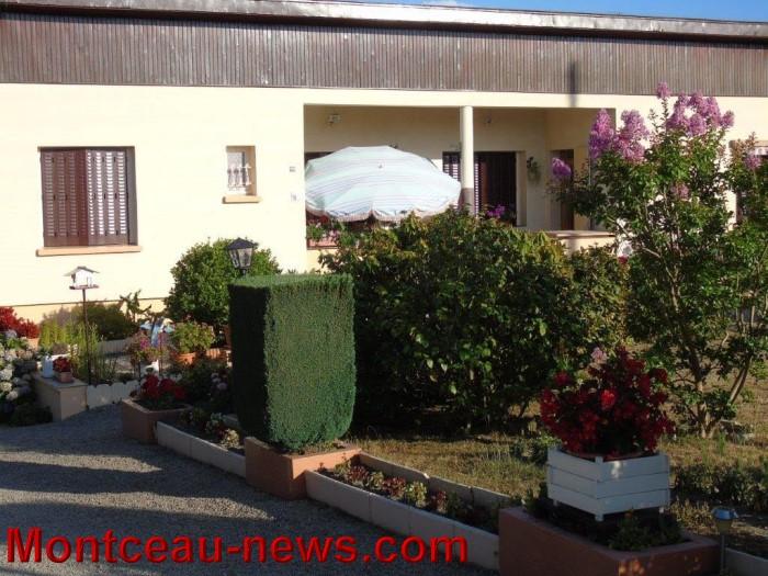 fleurs mont 24071531