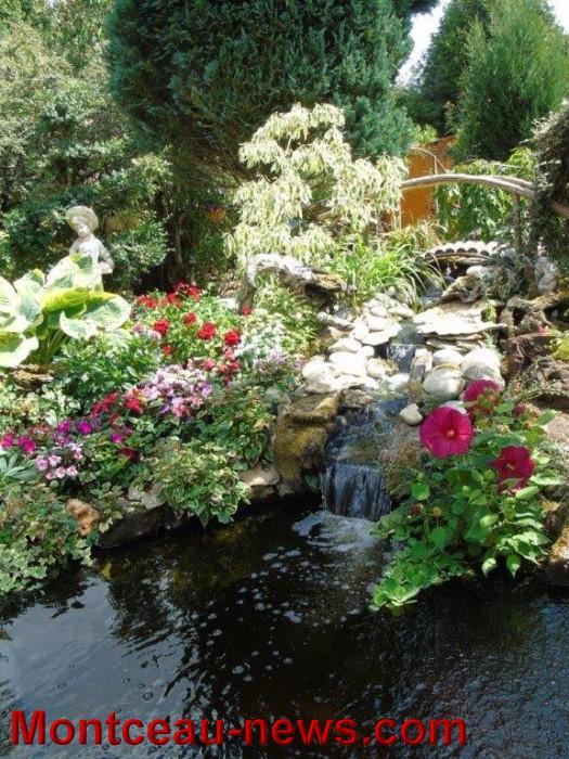 fleurs mont 24071536