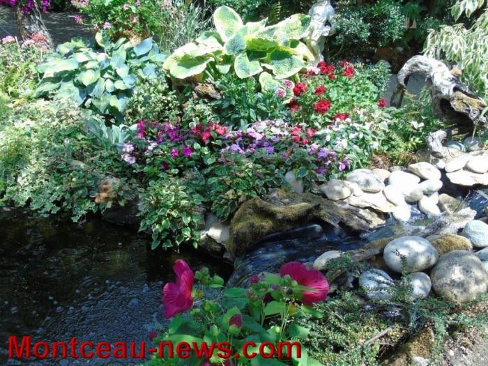 fleurs mont 24071537