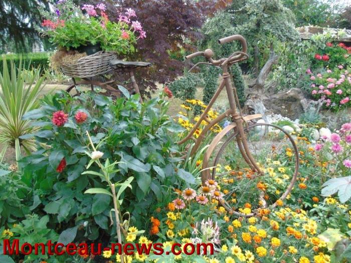 fleurs mont 24071539