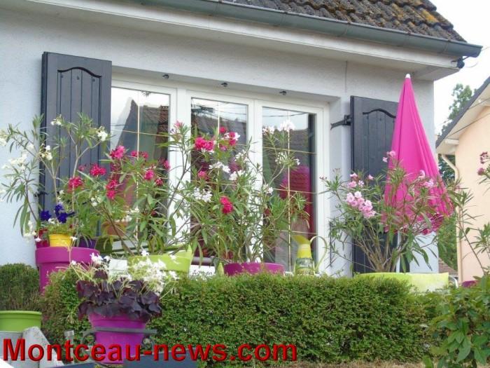 fleurs mont 24071541