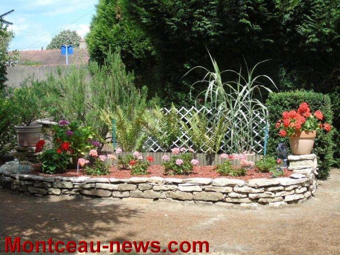 fleurs mont 2407156