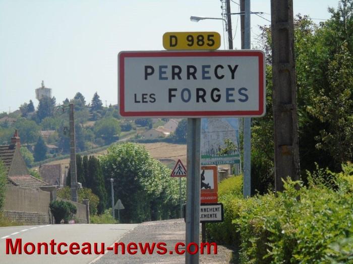 perrrecy 14081521