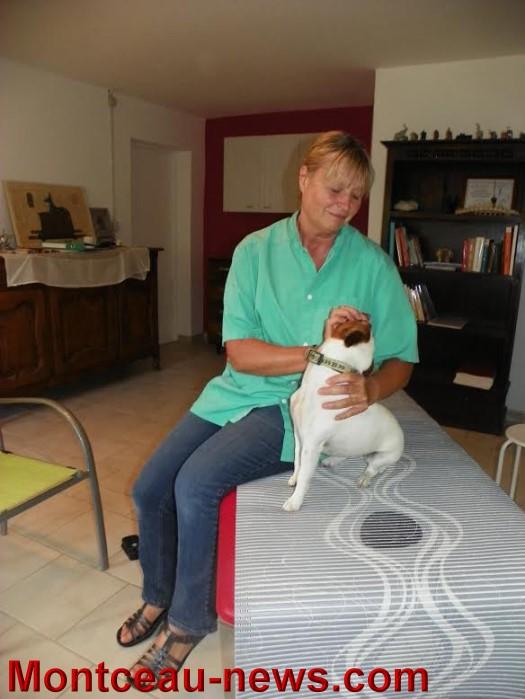 osteo chien 0909155