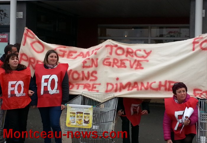 geant torcy 3110155