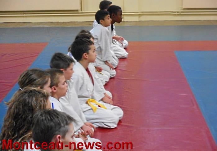 judo 1510158.