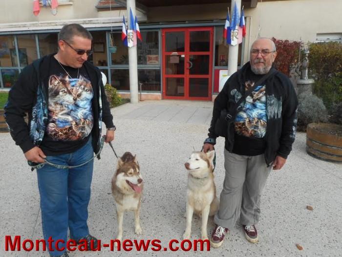 chien bizots 0911153