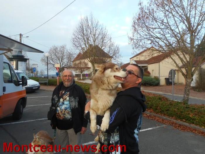 chien bizots 0911156