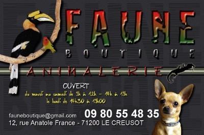 faune 29111521