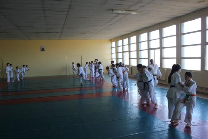 judo 10111512