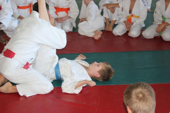 judo 1011157