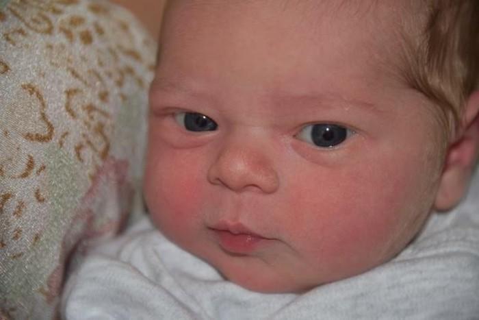 bebe nolan 3012152