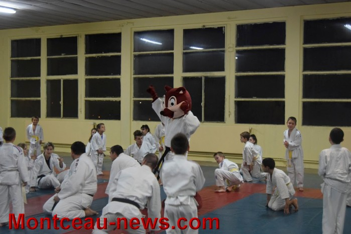 judo 1912153