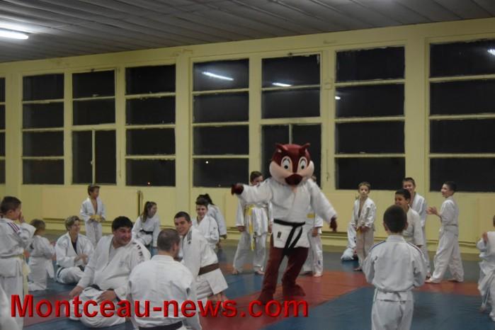 judo 19121574