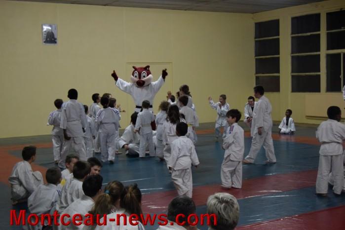 judo 19121575