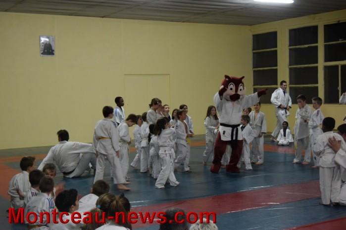 judo 19121576