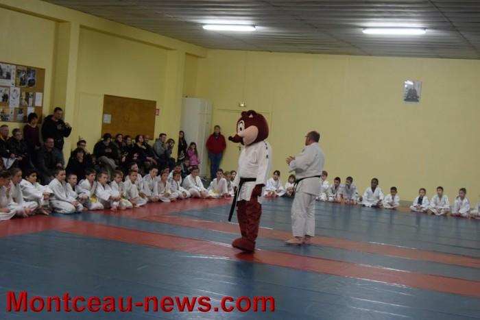 judo 2012155