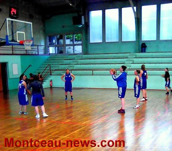 basket 1101164