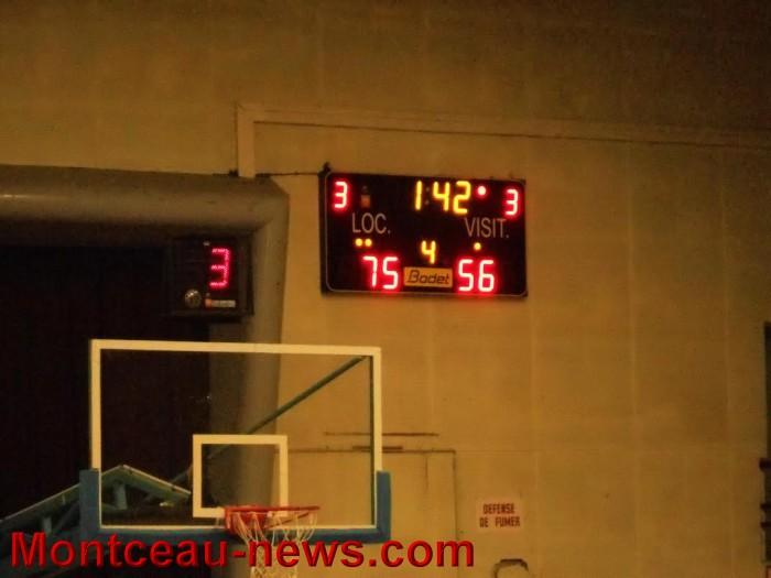 basket 3101165