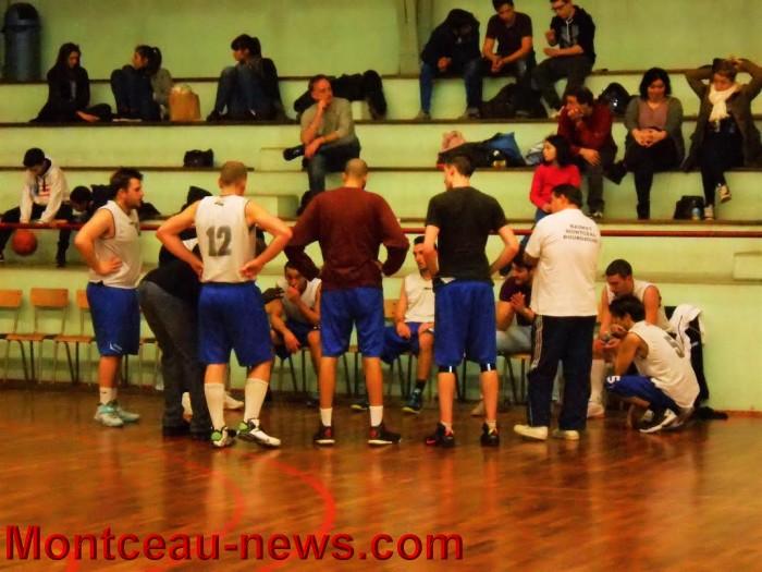 basket 3101167