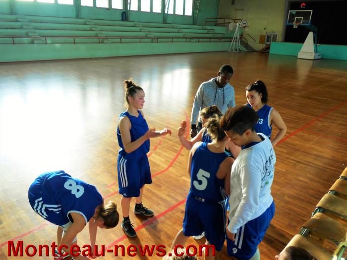 basket 0802164