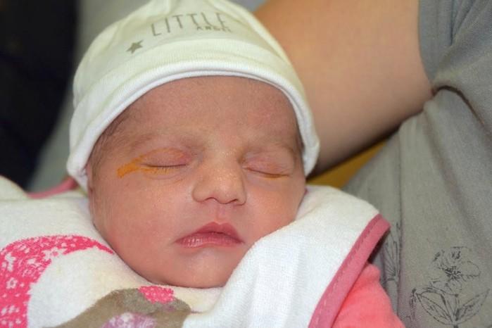bebe leona 19032165