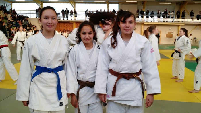 judo mont 11021610