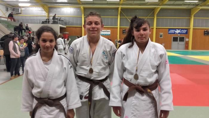 judo mont 1102167