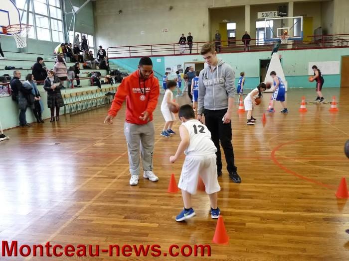 basket m 10031610