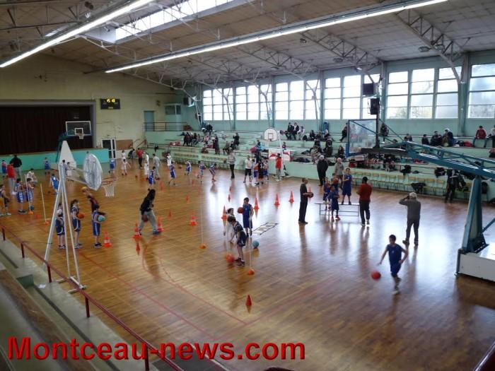 basket m 10031629