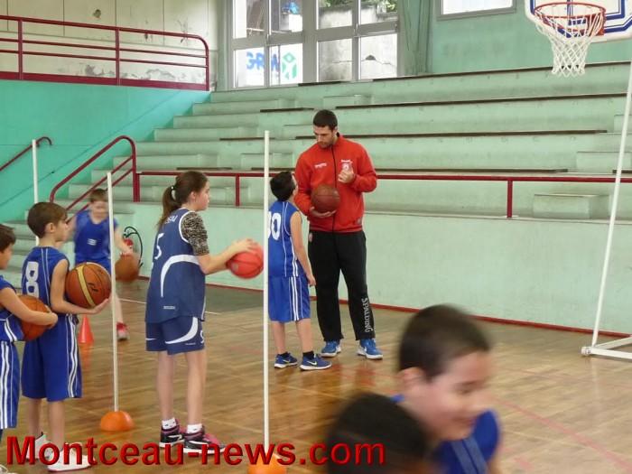 basket m 10031630