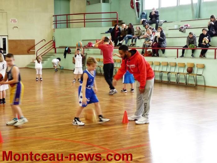 basket m 1003165
