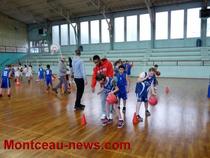 basket m 1003168