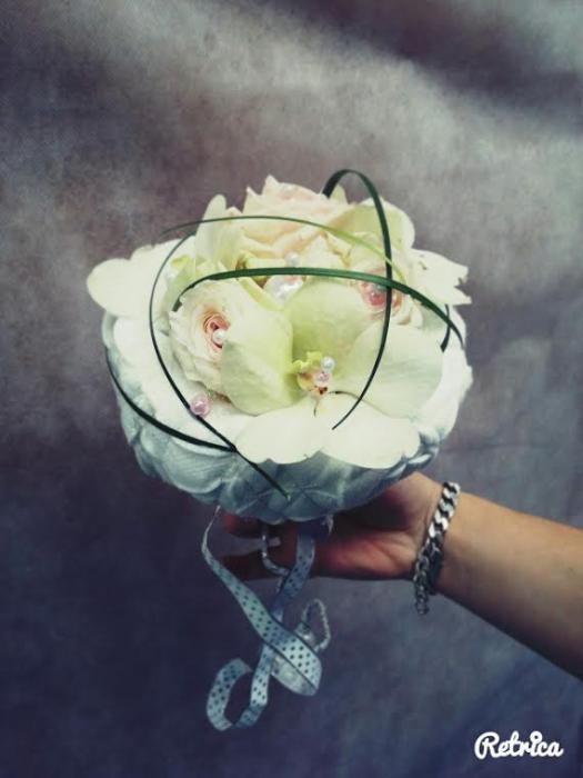 fleurs magali 2703162