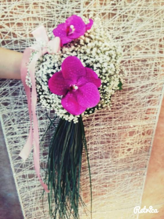fleurs magali 2703163
