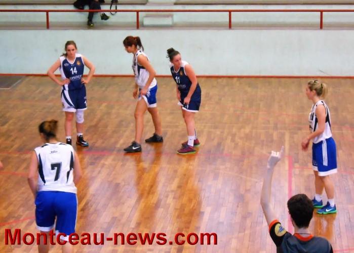 basket f 0504164