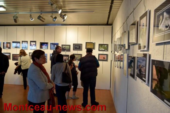 expo photo 2304165