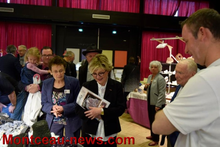 fossilles 24041620