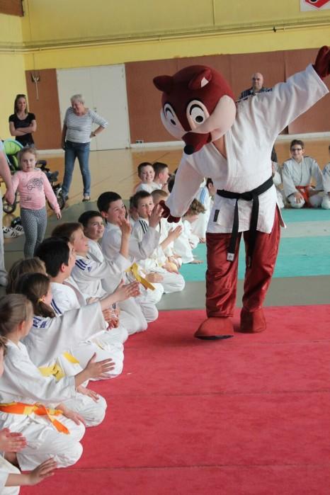 judo 0904162