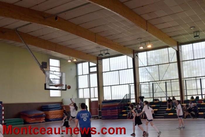 basket 0805162