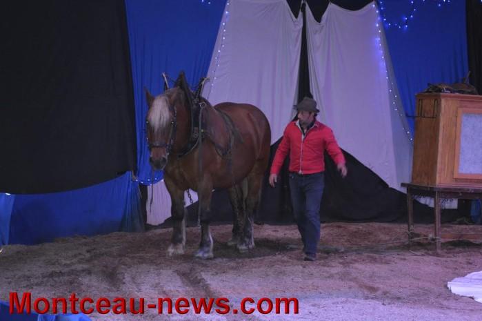 chevaux 06051611