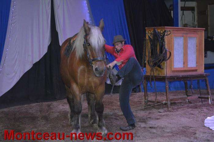chevaux 06051615