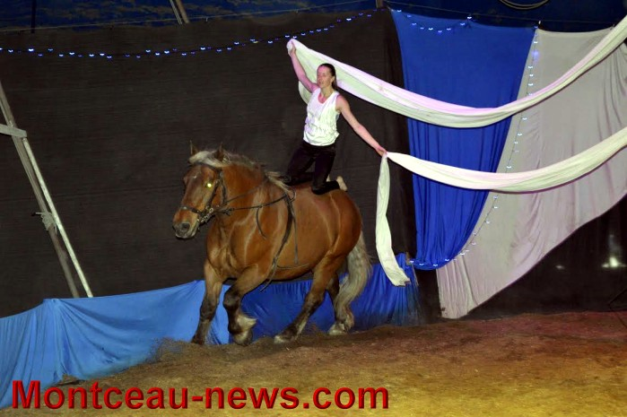 chevaux 06051624