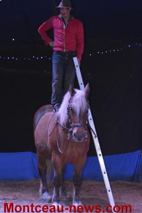 chevaux 0605164