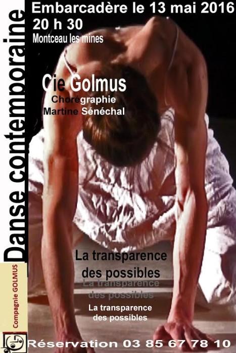 golmus 05051614