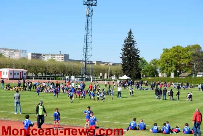 jeux rugby 0501617
