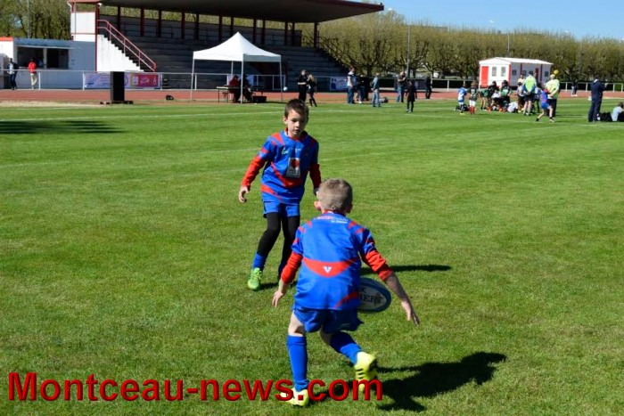 jeux rugby 0501623