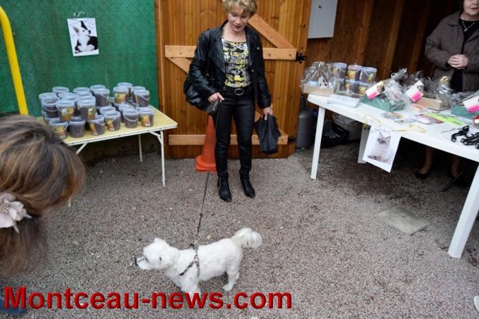 SPA « Montceau News  Linformation de Montceau les Mines et sa