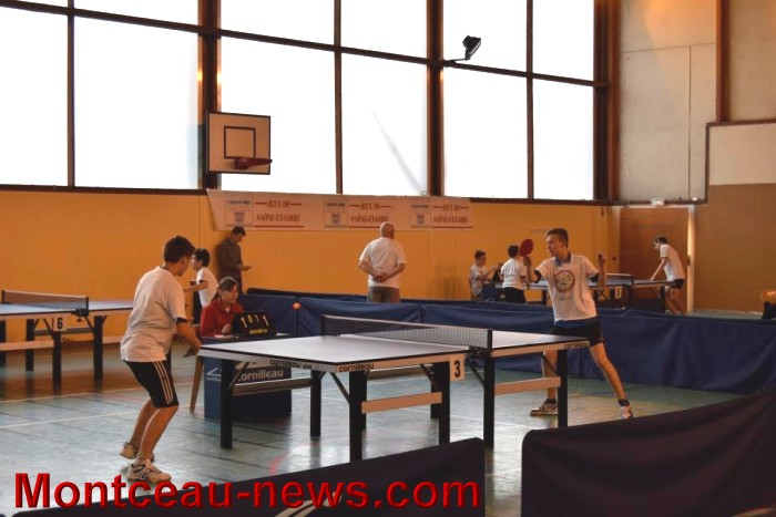 tennis table 0805163
